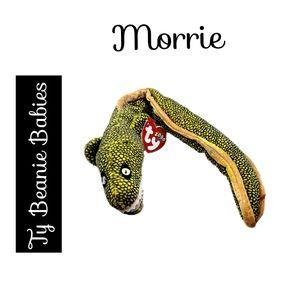 🔴 15/$25. Ty Beanie ~ the Moray Eel Sea Snake